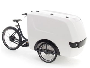 Electric Cargo Delivery Tricycle