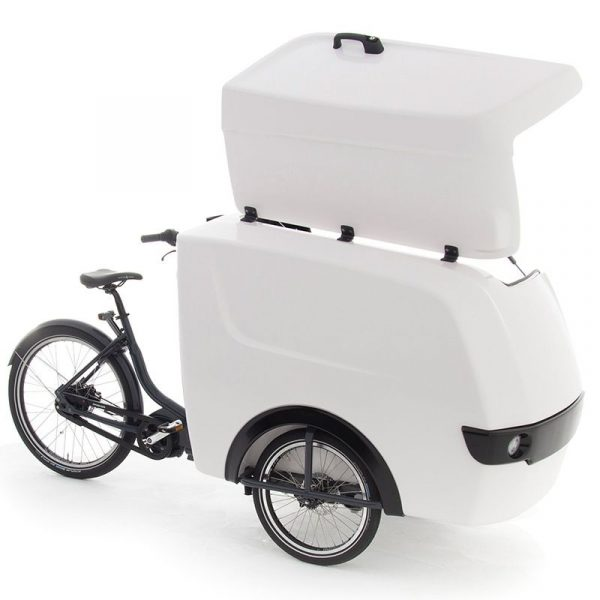 Raleigh Electric Cargo trike