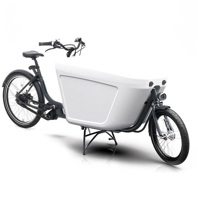 Raleigh Pro Bike electric cargo bike
