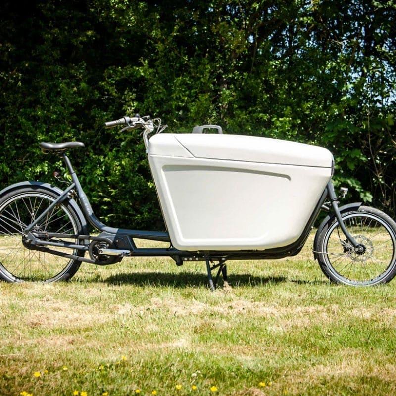 Raleigh Pro Bike Mid Motor Electric Cargo Bike – 2021