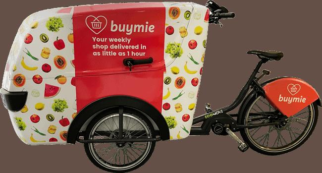 Buymei E Cargo Delivery Trike