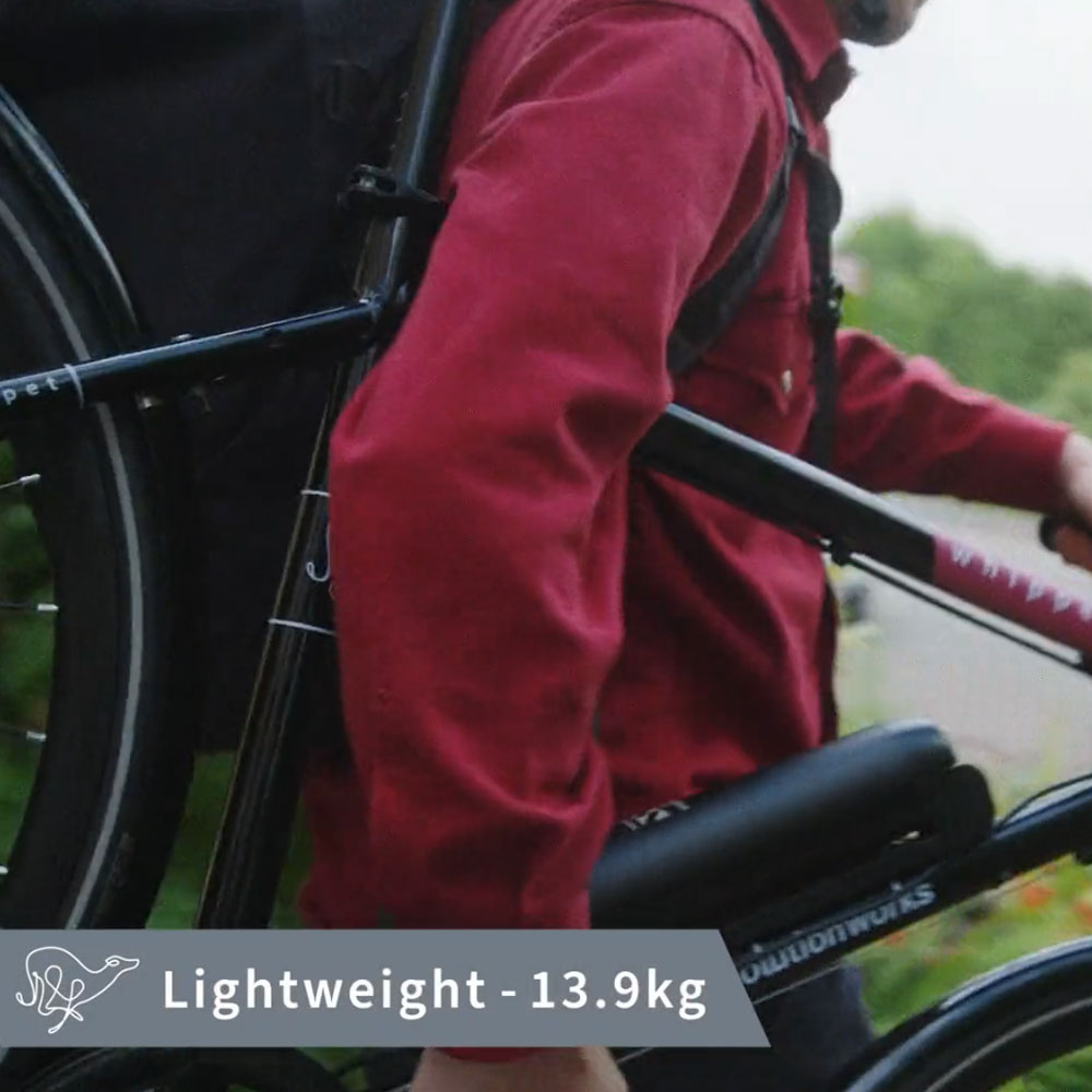 Light Weight Electric Bicycle